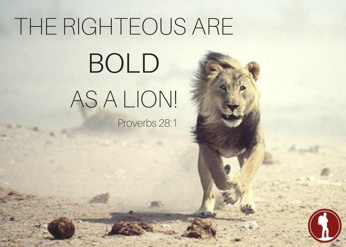 We Walk As Lions Heartstone Journey